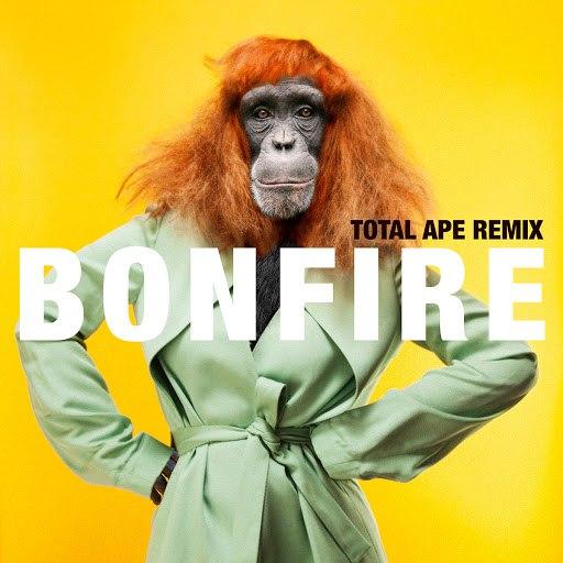 Miss Li альбом Bonfire (Total Ape Remix)