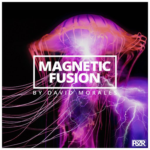 David Morales альбом Magnetic Fusion