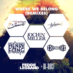 Fedde Le Grand альбом Where We Belong (The Remixes)