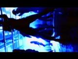 LA BOUCHE - Mama Look (I Love Him) - widescreen