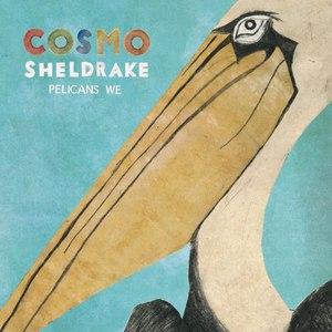 Cosmo Sheldrake альбом Pelicans We
