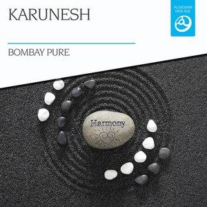 Karunesh альбом Bombay Pure