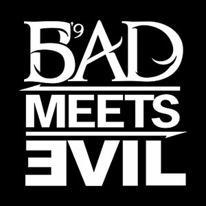 Bad Meets Evil альбом The Shady Project