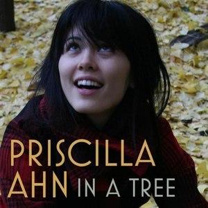 Priscilla Ahn альбом In A Tree