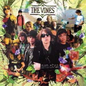 The Vines альбом Melodia