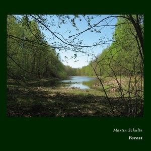 Martin Schulte альбом Forest