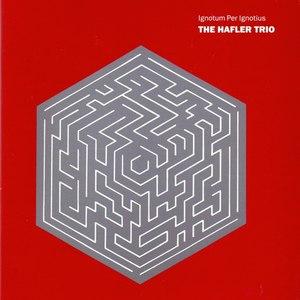 The Hafler Trio альбом Ignotum Per Ignotius