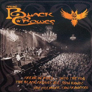 The Black Crowes альбом Freak 'N' Roll... Into The Fog