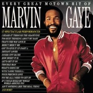 Marvin Gaye альбом Every Great Motown Hit of Marvin Gaye