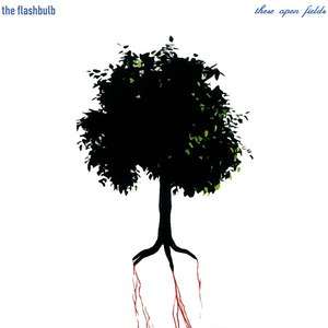 The Flashbulb альбом These Open Fields