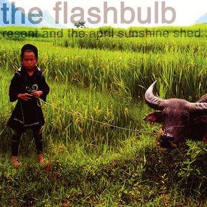 The Flashbulb альбом Resent and the April Sunshine Shed
