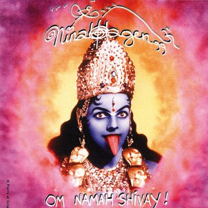 Альбом Nina Hagen Om Namah Shivay