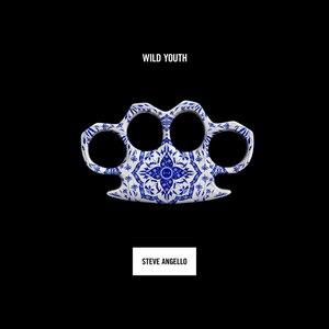 Steve Angello альбом Wild Youth