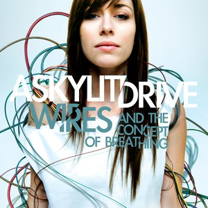 A Skylit Drive альбом Wires...And the Concept of Breathing