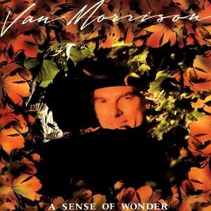 Van Morrison альбом A Sense Of Wonder