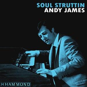 Andy James альбом Soul Struttin