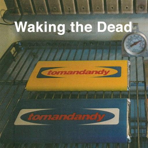 Tomandandy альбом Waking the Dead (Original Motion Picture Soundtrack)