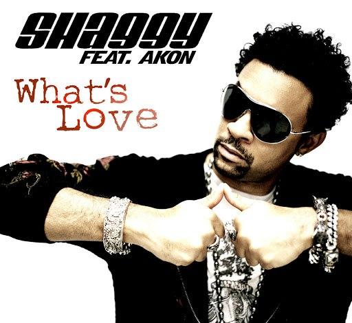 Shaggy альбом What's Love (feat. Akon)