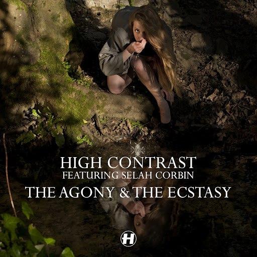 High Contrast альбом The Agony & The Ecstasy (feat. Selah Corbin)