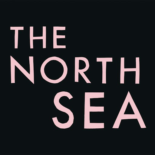 Franz Ferdinand альбом The North Sea