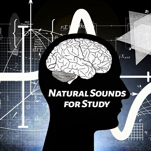 Deep Focus альбом Natural Sounds for Study – Calm Tracks for Learning, Perfect Concentration