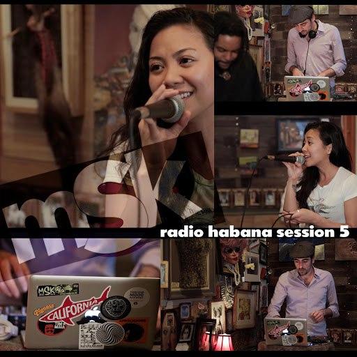MSK альбом Radio Habana Session 5