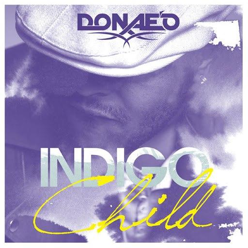 Donae'o альбом Indigo Child