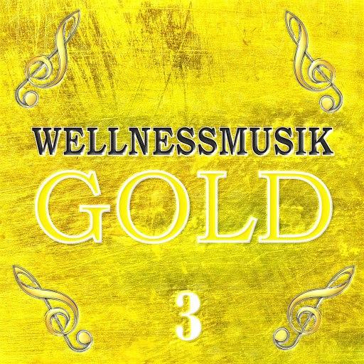 Largo альбом Wellnessmusik Gold 3