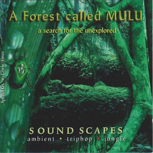Junkie XL альбом A Forest Called Mulu