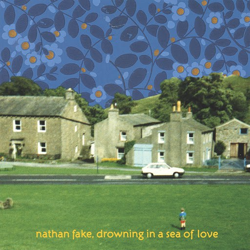 Nathan Fake альбом Drowning In A Sea Of Love