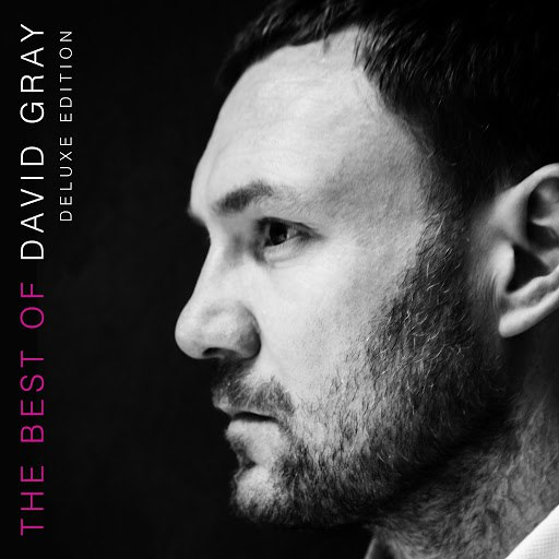 David Gray альбом The Best of David Gray (Deluxe Edition)