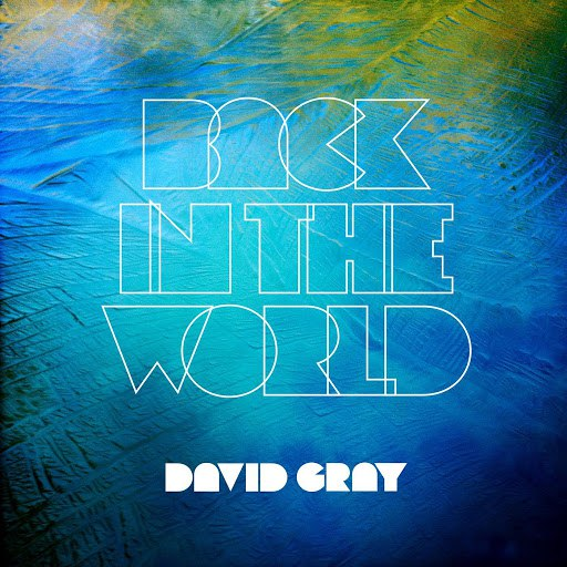 David Gray альбом Back in The World
