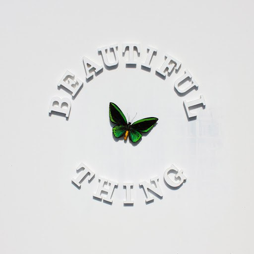 The Stone Roses альбом Beautiful Thing