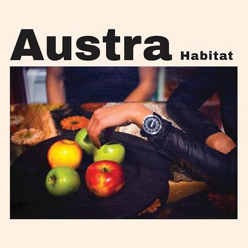 Austra альбом Habitat