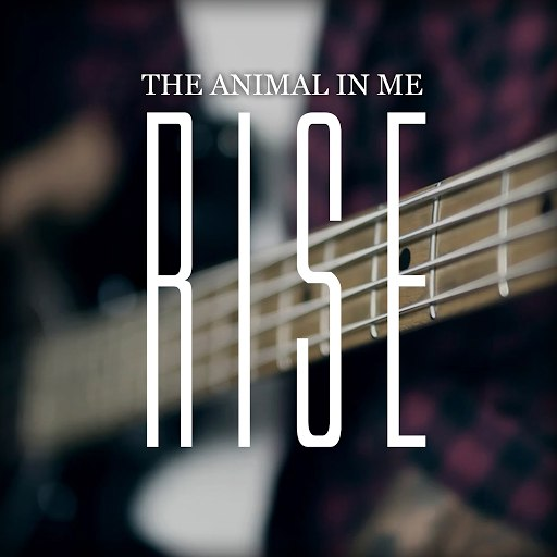 The Animal In Me альбом Rise