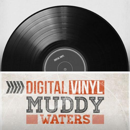 Muddy Waters альбом Digital Vinyl