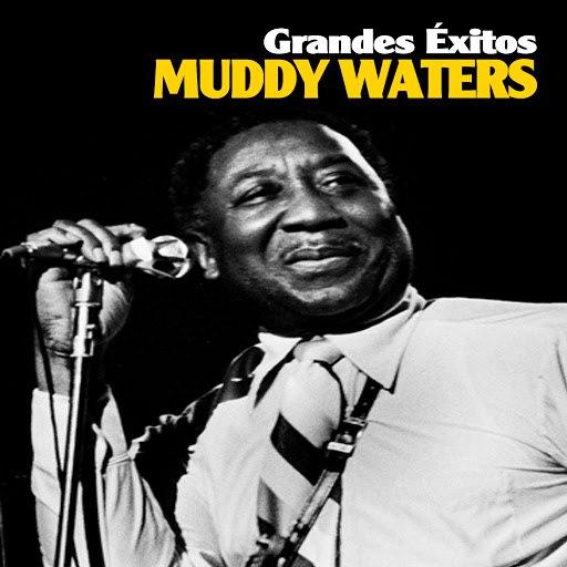 Muddy Waters альбом Grandes Éxitos