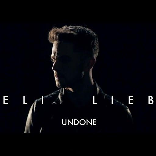 Eli Lieb альбом Undone