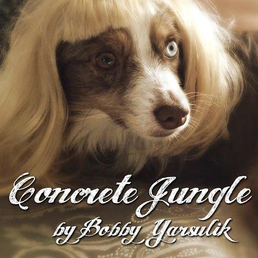 Bobby Yarsulik альбом Concrete Jungle