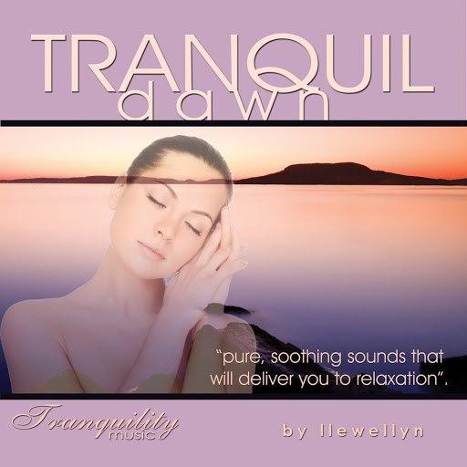 Llewellyn альбом Tranquil Dawn