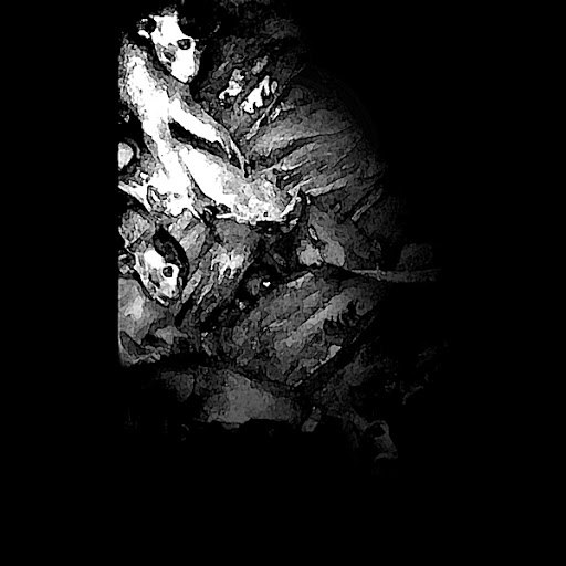 Forensics альбом EVL
