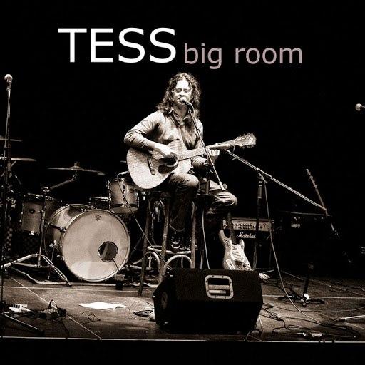 Tess альбом Big Room