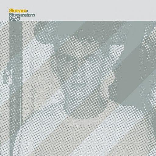 Skream альбом Skreamizm, Vol. 3
