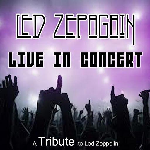 "Led ZepAgain альбом Led Zepagain ""Live"": A Tribute to Led Zeppelin"