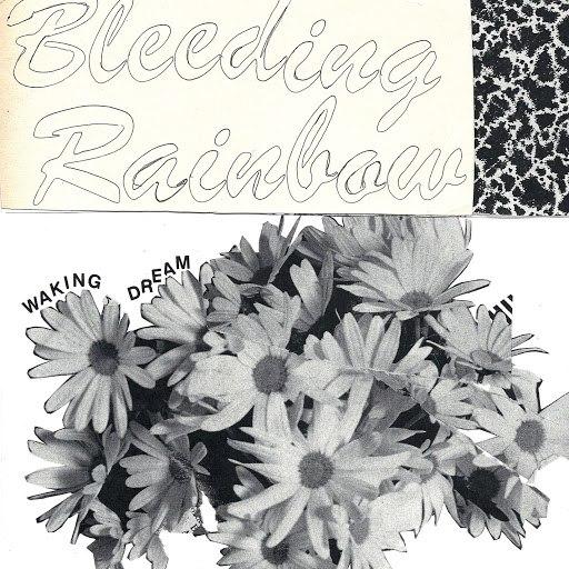 Bleeding Rainbow альбом Waking Dream