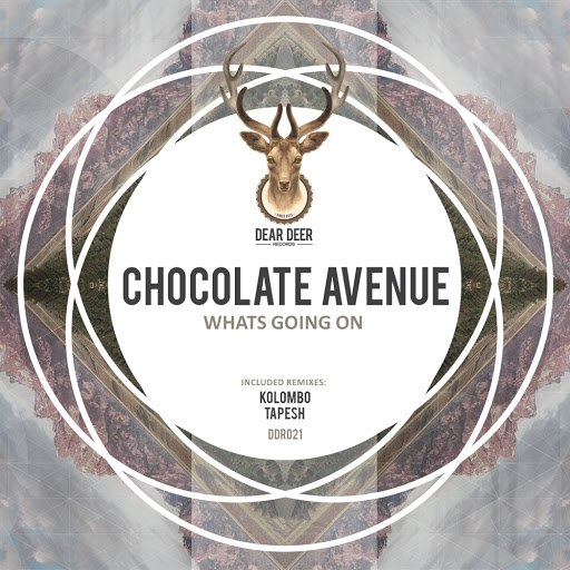 Chocolate Avenue альбом Whats Going On