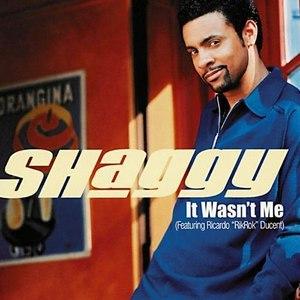 Shaggy альбом It Wasn't Me