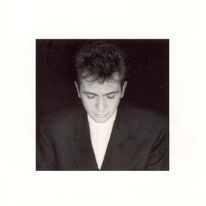 Peter Gabriel альбом Shaking the Tree