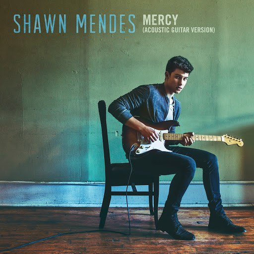 Shawn Mendes album Mercy (Acoustic Guitar)
