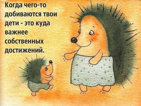 Фото №456239746 со страницы Ирины Калинкиной